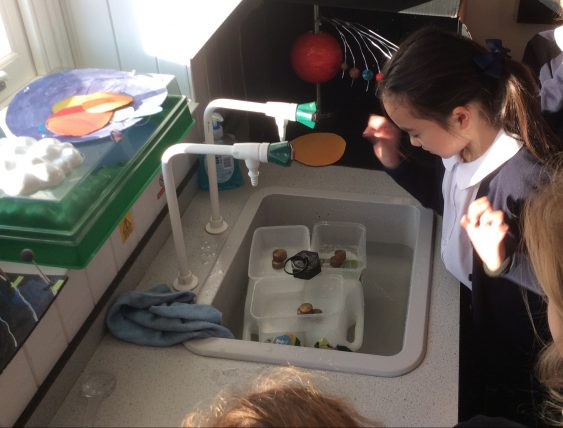 Science Year 5 boats