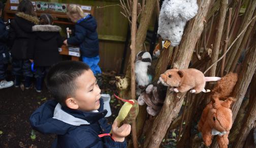 Forest School animals