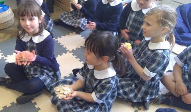Pupils holding mushrooms